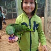papugarnia ferie